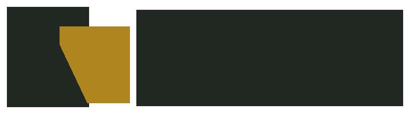 视图 贸易公司 Logo